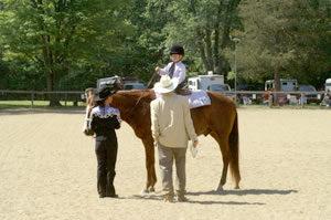 PICT0145_horse_kid